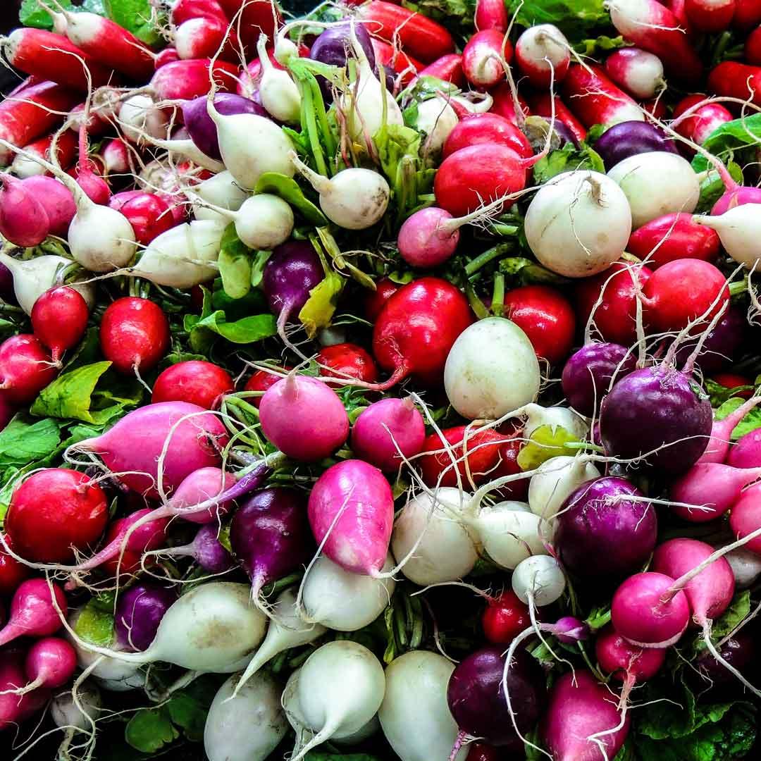 immune-foods-radish