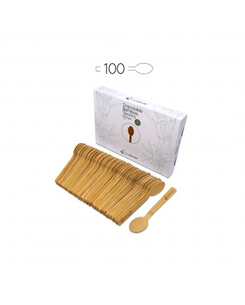 Disposable Bamboo Spoons 100 Pack